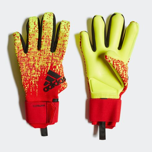 Rękawice bramkarskie adidas Predator Pro CW - DN8574